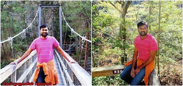 Tallulah Gorge Park Trails
