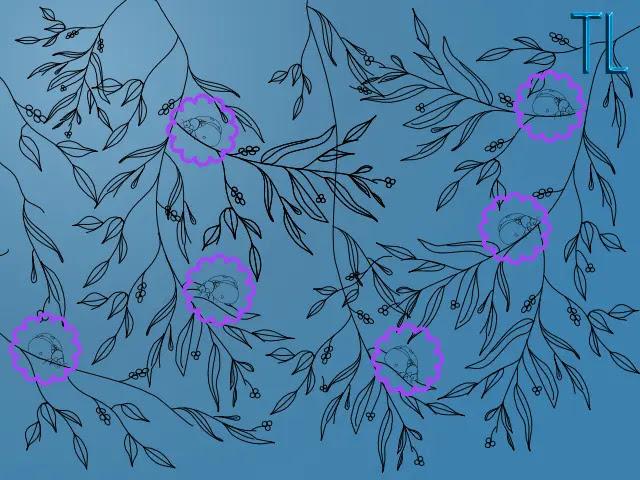 Encuentra las seis mariquitas escondidas