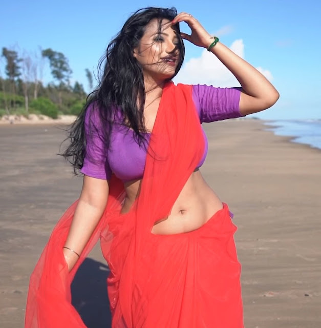 Shree Moyee in Saree