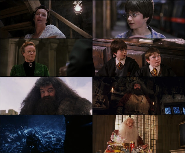 Harry Potter and the Sorcerer's Stone 2001 Dual Audio 720p BluRay