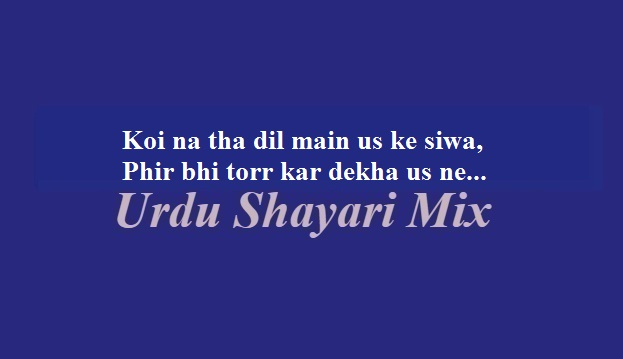 Urdu poetry, Sad poetry, کوئی نہ تھا دل