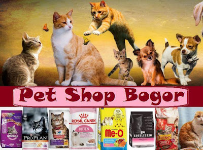 Petshop murah Bogor