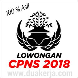 Menpan.go.id Penerimaan CPNS 2018 Resmi Dibuka Bulan Agustus
