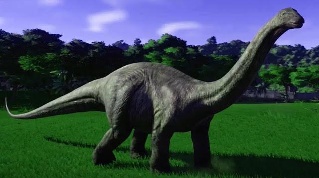 Vertebra dan tulang-tulang di kaki lebih besar dan lebih berat daripada Diplodocus, meskipun seperti Diplodocus, Apatosaurus juga memiliki leher panjang dan ekor panjang. Ekornya mengangkat di atas tanah selama gerakan normal. Seperti kebanyakan sauropoda, Apatosaurus hanya memiliki satu cakar besar di masing-masing lengan depan. Tengkorak Apatosaurus pertama kali diidentifikasi pada tahun 1975.