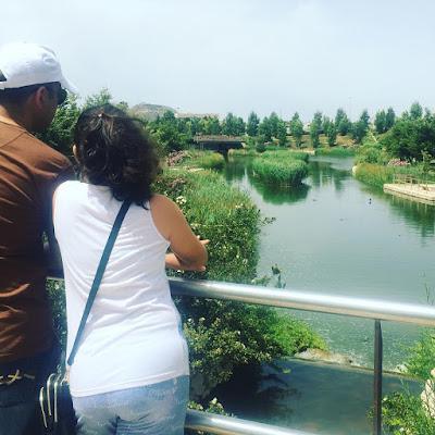 La Marjal, parque, Alicante, San Juan,