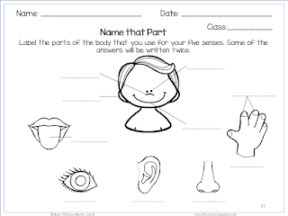 The Five Senses Printables