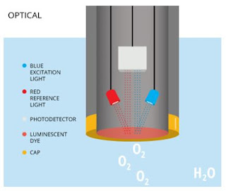 Ilustrasi Cara Kerja Dissolved Oxygen Sensor tipe Optik