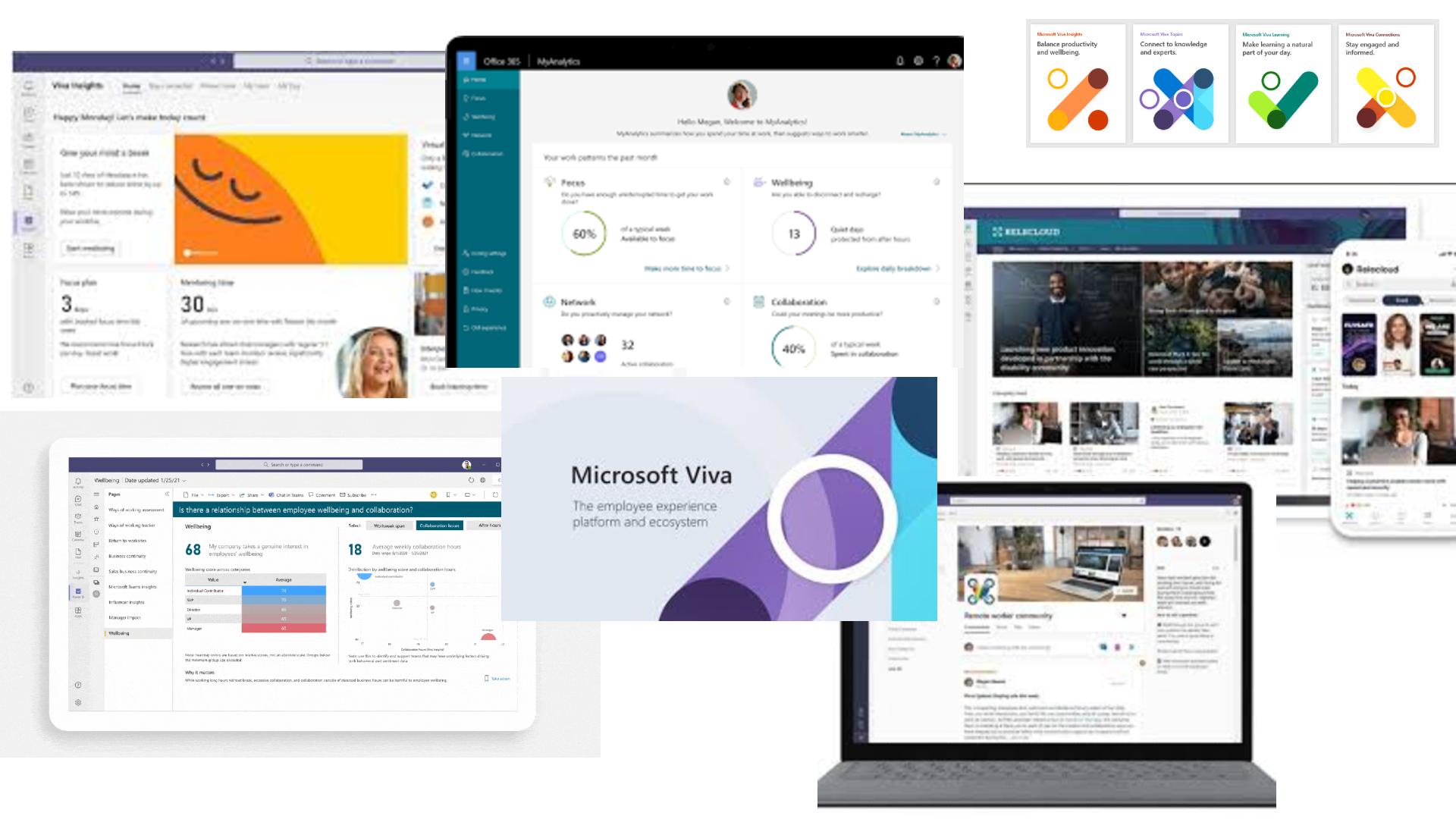 Microsoft Viva Mashup
