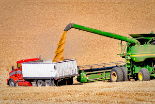 Top 10  wheat exporters country