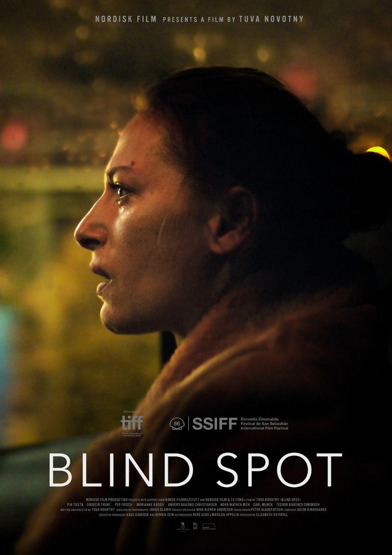 blind spot film poster