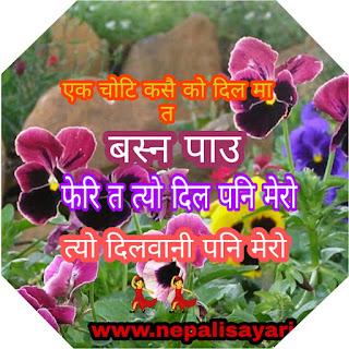 https://www.nepalisayari.com/?m=1