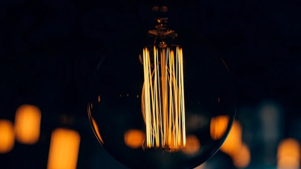 Warm Light. Creative Bulb