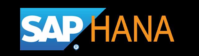 How to write SAP HANA Dynamic SQL Query Examples
