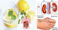 https://steviaven.blogspot.com/2018/04/beneficios-beber-agua-con-limon-ayunas.html