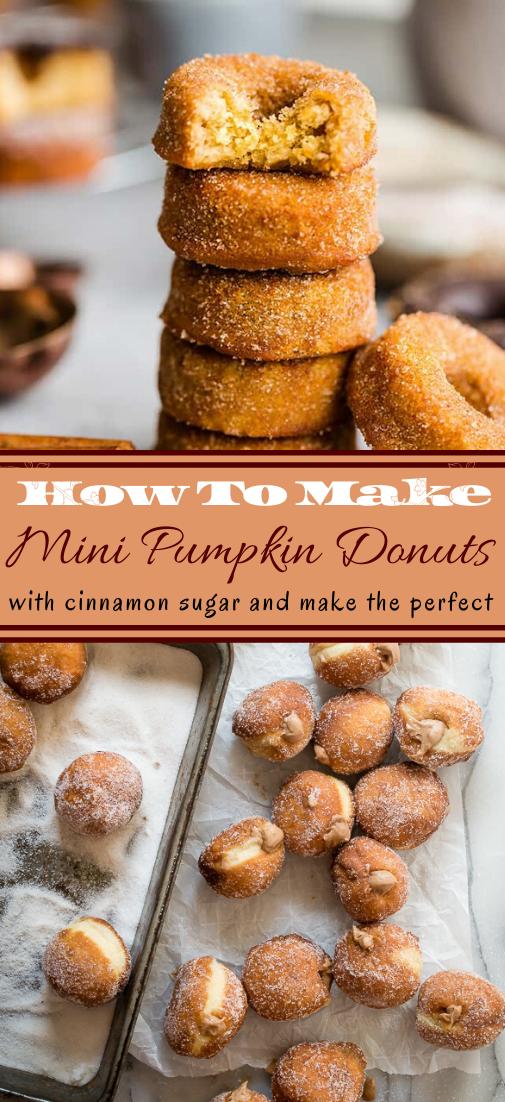 Mini Pumpkin Donuts #desserts #cakerecipe #chocolate #fingerfood #easy