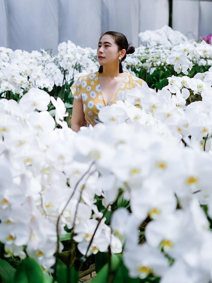 Piknik cantik di tengah kota, ke Duta Orchid Garden saja !