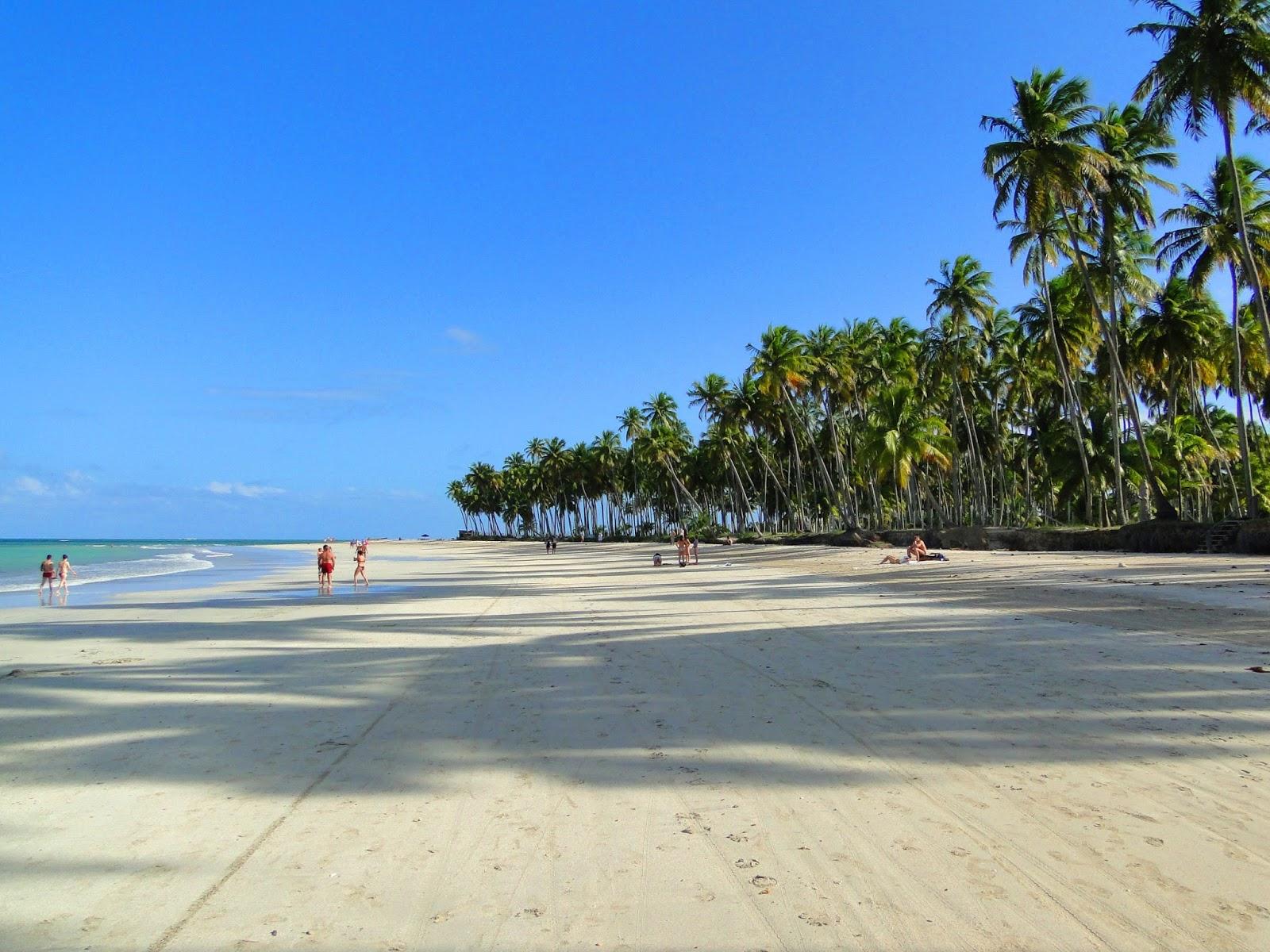 Praia dos Carneiros em Costa dos Corais.