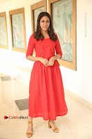 Actress Lavanya Tripathi Latest Pos in Red Dress at Radha Movie Success Meet .COM 0055.JPG