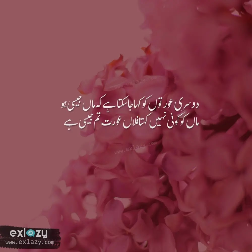The Best 20 Mother Quotes in Urdu