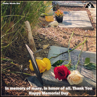 In memory of many, in honor of all. Thank You Happy Memorial Day [Photo credit: Nicole Oke] (roses on the markers of fallen wildland firefighters)