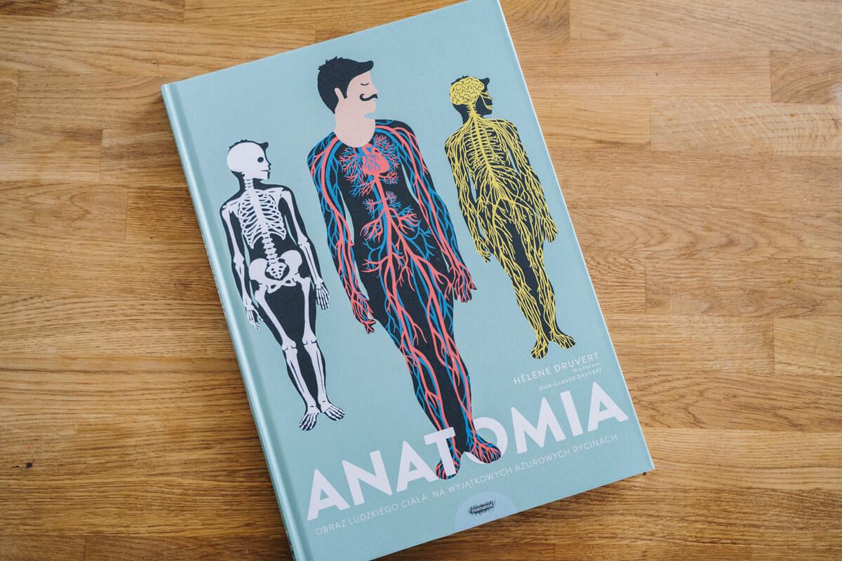 Książka Anatomia dla dzieci o anatomii