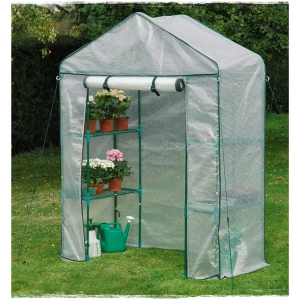 "<img src=""mini greenhouse4.jpg"" alt=""mini green house"">"