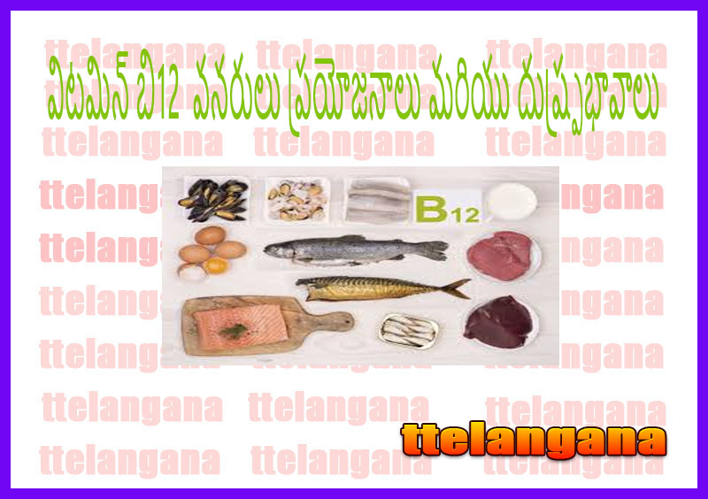 విటమిన్ బి12  వనరులు ప్రయోజనాలు మరియు దుష్ప్రభావాలు