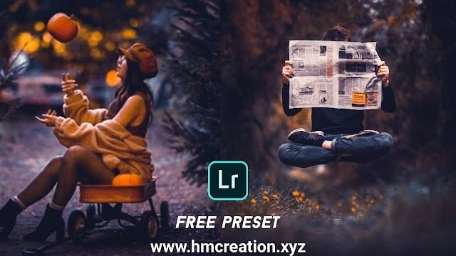 Download free lightroom mobile preset | moody dark and gold