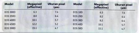 Ukuran Pixel Canon EOS 7D