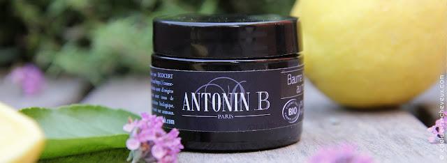 soin sans rinçage miel cheveux antonin b