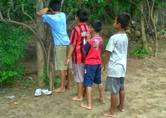gambar anak bermain petak umpet