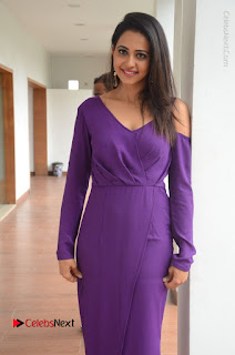 Actress Rakul Preet Singh Latest Stills in Beautiful Long Dress  0092.JPG