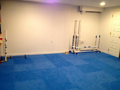 Greatmats foam tiles floor in dog training center