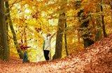 Herbstferien bei Landal