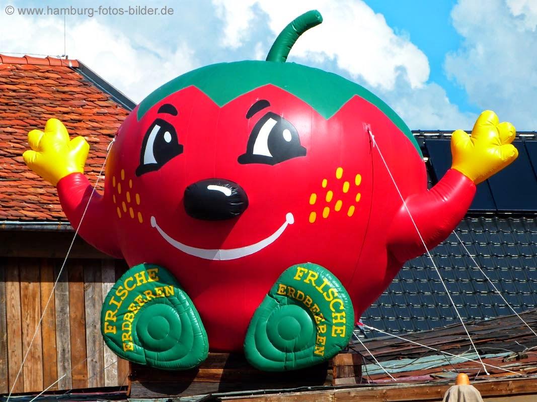 Karls Erdbeerhof, große Erdbeere