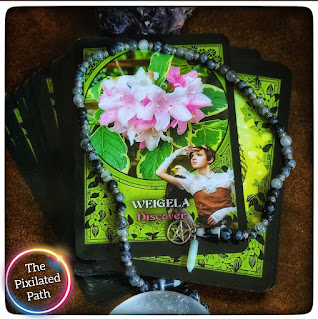 Weigela card from the Flower Magic Oracle