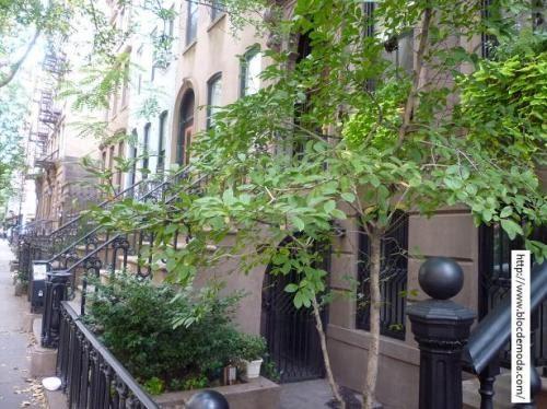 Dnde queda la casa de Carrie Bradshaw en Sex and the City