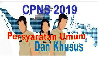 Di Buka 11 November 2019, Persyaratan Umum dan Khusus Seleksi CPNS 2019