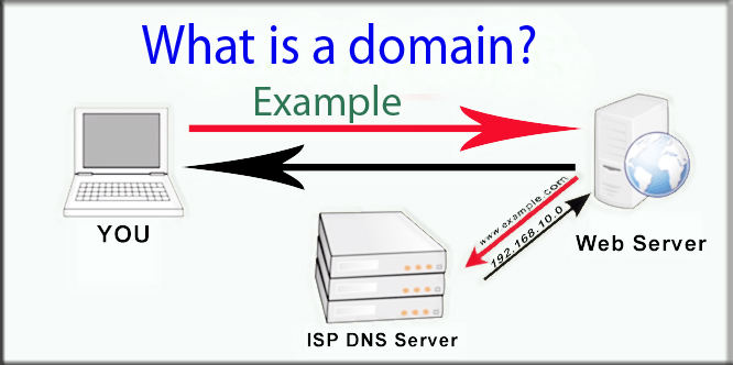 10 popular questions about the domain