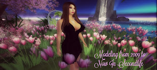 Modeling from 2009 to Now In Secondlife