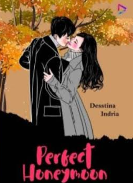 Novel Perfect Honeymoon Karya Desstina Indria PDF