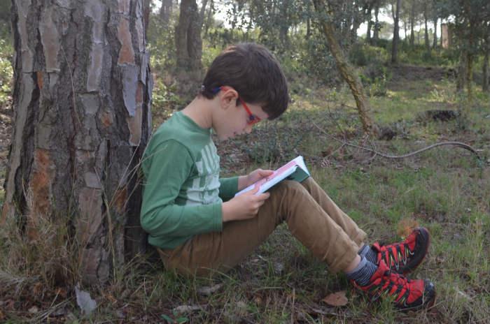 ideas ayudar cerebro a aprender a leer, neurociencia y lectura, cuando empezar aprendizaje