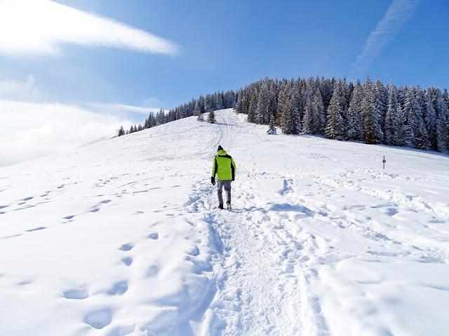 Szlak na Rusinową Polanę zimą