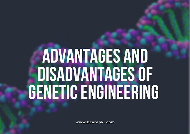 Advantages and Disadvantages of Biotechnology and Genetic Engineering