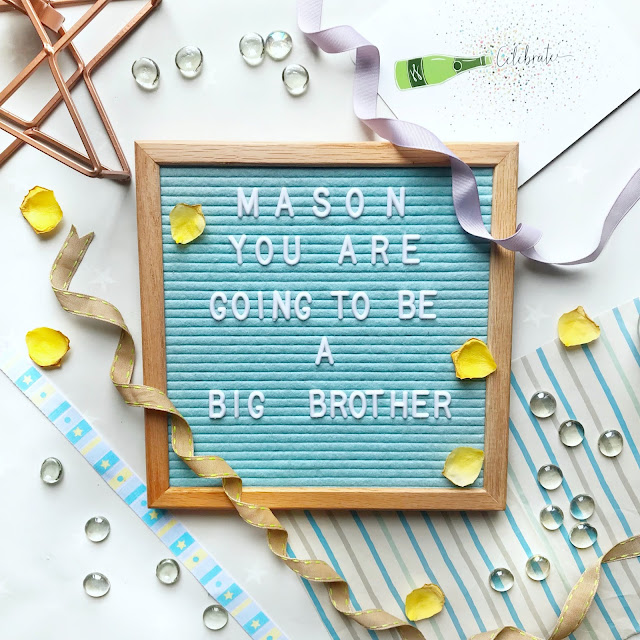 pregnancy-announcement-big-brother
