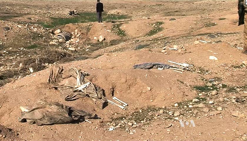 Масове поховання, знайдене у 2015 році у селі біля Синджара