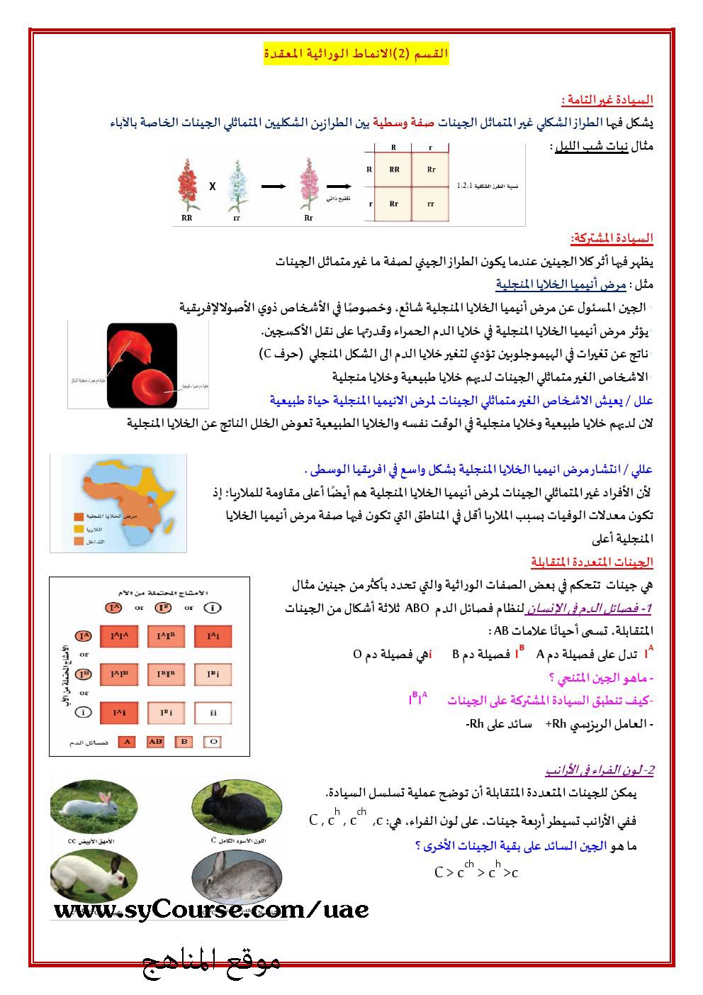 متقدم الوحدة التاسعة الوراثة المعقدة والوراثة البشرية الصف الثاني عشر علوم الفصل الأول 2016 2017 المناهج الإماراتية