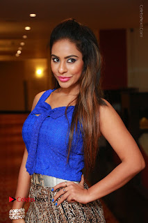 Telugu Actress Srilekha Reddy Latest HD Pos in Sleeveless Blue Top at Muse Art Gallery  0013.JPG