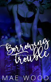 http://myBook.to/Borrowing-Trouble