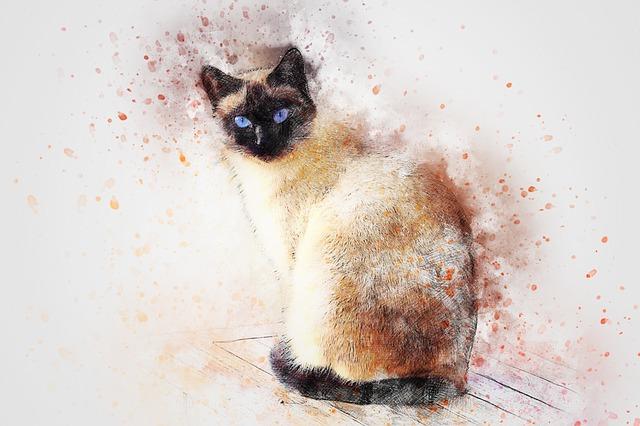 Mitos Kucing Siam